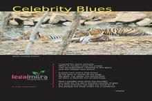 Media & Publications