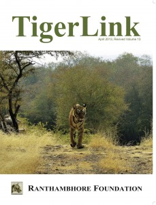 Tiger Link Cover